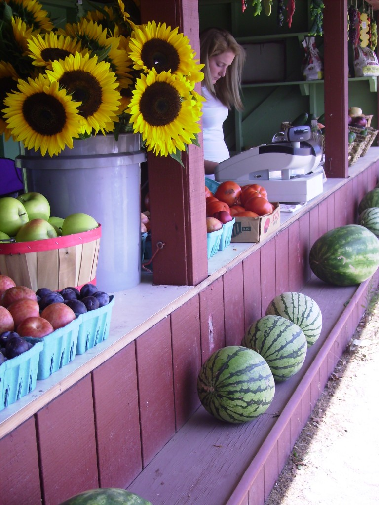 North Fork, LI farm stand